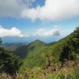 水野林道コースから最短で登って山頂で楽しんだ米山登山