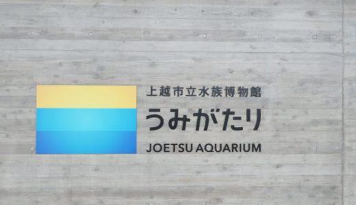 上越水族館【うみがたり】に行ってきました