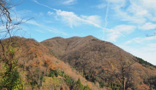 弥彦山【八枚沢登山口】からの周回