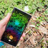 知りたい花の名前が出てくる超便利なアプリ「Googleレンズ」